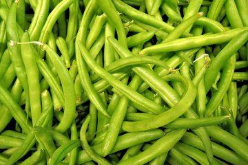 manger des haricots